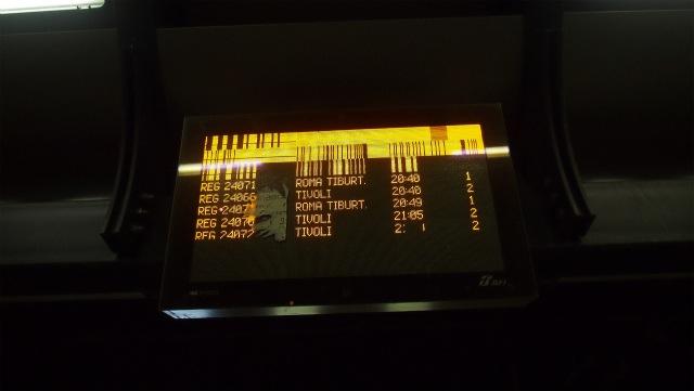 P2228863.jpg