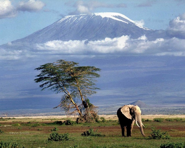 plains_below_kilimanjaro_1280x1024.jpg