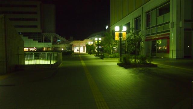 PA147121.jpg